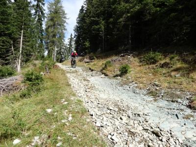 Dolomitien TransAlp 2016_13
